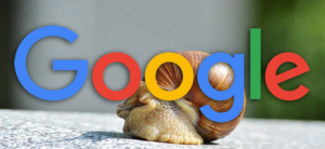 google and snail